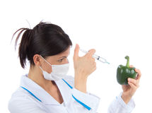 Scientist injecting syringe mixture into green sweet pepper Royalty Free Stock Photo