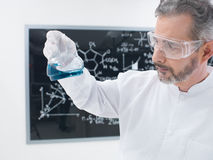 Scientist  lab chemical experiment Stock Photos