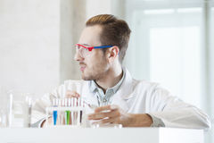 Scientist in the lab communicating with colleagues Royalty Free Stock Photography