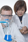 Scientist in the Laboratory 2 Royalty Free Stock Photography