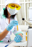 Scientist in laboratory analyzing yellow liquid in test tube Royalty Free Stock Photo