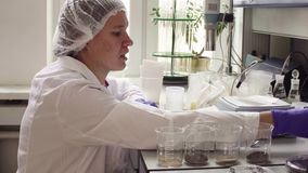 The scientist in laboratory marking soil samples