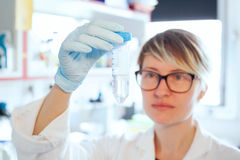 Scientist in laboratory stock photos