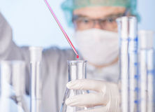 Scientist in the laboratory Royalty Free Stock Photos