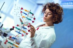 Scientist looking at DNA. Scientist woman looking at DNA in laboratory stock image