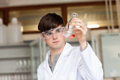 Scientist looking at a liquid in an flask Stock Photography