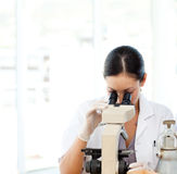 Scientist looking through a microscope. Attractive scientist looking through a microscope stock photos