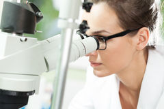 Scientist looking through microscope. Female scientist looking through microscope in laboratory Royalty Free Stock Photography