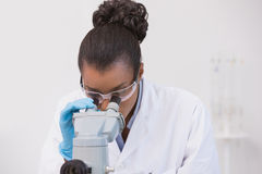 Scientist looking through a microscope Royalty Free Stock Photo