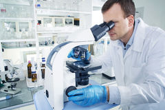 Scientist looking through microscope in laboratory Royalty Free Stock Image