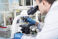 Scientist looking through microscope in laboratory Royalty Free Stock Images