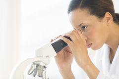 Scientist Looking Through Microscope In Laboratory Stock Image