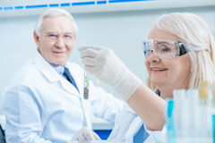 Scientist looking at smiling colleague holding green plant in test tube Stock Photography