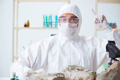The scientist looking and stone samples in lab. Scientist looking and stone samples in lab Royalty Free Stock Image
