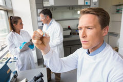 Scientist looking at test slide. At the laboratory Stock Photo