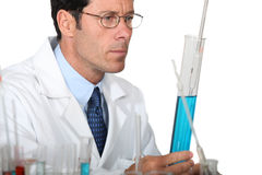 Scientist looking at test tube Royalty Free Stock Image