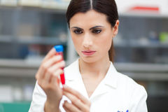 Scientist looking at a test tube Royalty Free Stock Photography