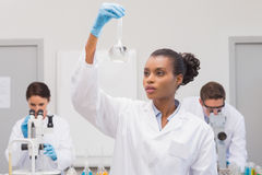 Scientist looking at white precipitate while colleagues working Royalty Free Stock Photography