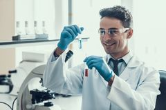 Scientist looks at Liquid Samples in Flasks in Lab. Young Smiling Researcher wearing White Coat Gloves and Protective Glasses examining Chemical Liquid Samples Royalty Free Stock Images