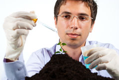 Scientist man working in laboratory Royalty Free Stock Photography