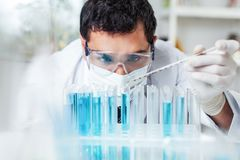 Scientist man working at the laboratory. Lab laboratory scientist young adult lab coat lab coats safety glasses Royalty Free Stock Image