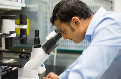 Scientist at microscope Royalty Free Stock Photos