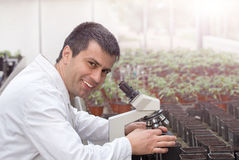 Scientist with microscope in green house Royalty Free Stock Photos