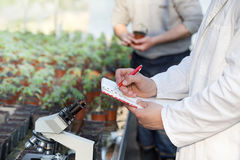 Scientist with microscope and seedlings Stock Photo