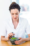 Scientist mixing herbs with pestle and mortar Royalty Free Stock Photography