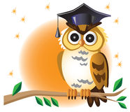 Scientist owl on branch and moon. Illustration on white background moon and graduation bird owl on a tree branch royalty free illustration