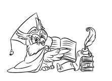 Scientist owl reading a book Stock Images