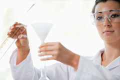 Scientist pouring liquid in a funnel Royalty Free Stock Images