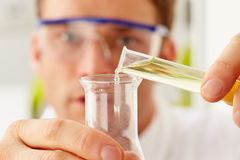 Scientist Pouring Liquid From Test Tube Into Flask Royalty Free Stock Photography