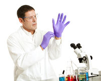 Scientist Puts on Gloves Royalty Free Stock Image