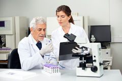 Scientist Reading Sample While Colleague Taking. Senior male scientist reading sample while colleague taking notes in laboratory Royalty Free Stock Photos