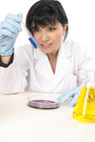 Scientist in research lab Royalty Free Stock Image