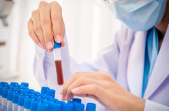 Scientist in research lab Royalty Free Stock Images