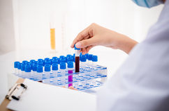 Scientist in research lab Royalty Free Stock Photography