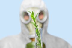 Scientist in respirator with green plant Stock Photo