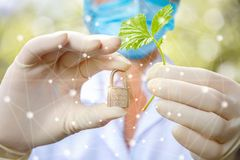 Scientist shows the sample plants and the castle. Concept protection for plants royalty free stock images
