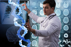 The scientist studying human dna in lab Stock Photography