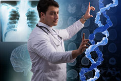 The scientist studying human dna in lab Royalty Free Stock Photo