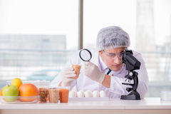 The scientist studying various food products Stock Images