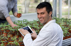 Scientist with tablet and sprouts in green house Stock Photo