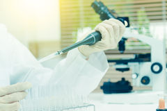 Scientist taking aliquote of an enzyme in modern lab,Young scien. Tist works in modern biological lab,science concept,science people and selective focus Stock Images