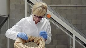 Scientist taking samples of dry CBD hemp seeds from sack with tweezers and glass tube in factory. Medicinal and recreational marijuana plants cultivation.n stock footage