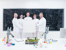 Scientist team in laboratory Royalty Free Stock Photography