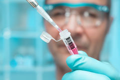 Scientist or tech holds liquid biological sample. In gloved hands Stock Photo