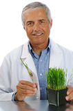 Scientist with test tube plant Stock Images