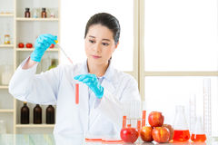 Scientist use dropper to test genetic modification food. In laboratory stock image